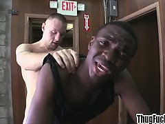 doggystyle-fucking-a-black-ass-with-a-big-cock