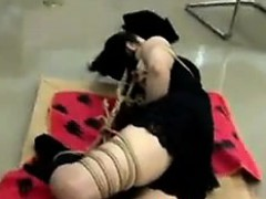 japanese-cutie-gets-tied-up