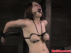 Spider Gagged Skank Being Caned By Powerful Master