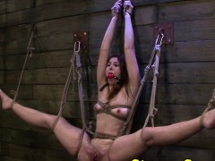 suspended-strapon-loving-sub-dominated-in-threeway
