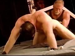 cbt-virgin-i-pound-hunks-balls-with-my-fist-and-as-i-talk