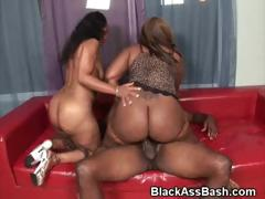 big-ass-black-girls-suck-and-ride-dick-in-a-threesome