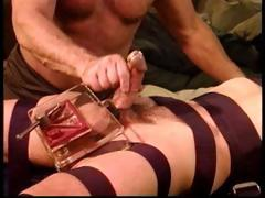 Cbt Young Stud With Bull Cock Gets Balls Crushed With My