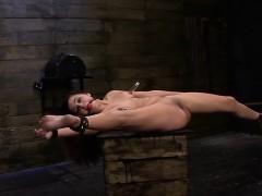 zoey foxx returns for more bondage slave training xxx.harem.pt