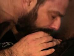 Black Bear Facializing Bearded Bottom