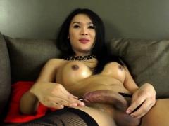Busty Ladyboy Spills Cum While Masturbating