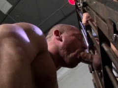 raw-dawged-amateur-bear